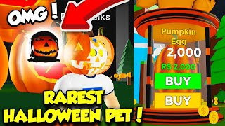 I ACTUALLY HATCHED THE RAREST LIMITED HALLOWEEN PET IN MAGNET SIMULATOR HALLOWEEN EVENT! (Roblox)