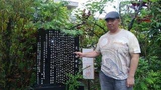 琉球文化の香りを求め、かつて琉球王国の 統治下にあった奄美大島を訪れ...