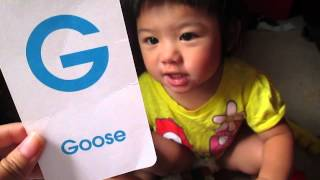 Toddler and flashcards