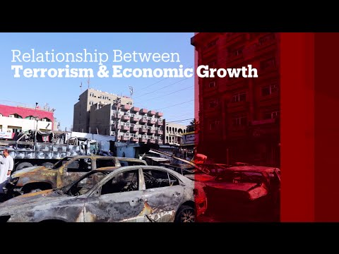 TRT World - World in Focus: Relationship between terrorism & economic growth