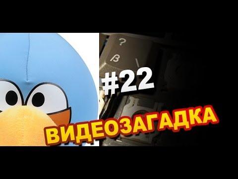 Видеозагадка #22 Что за Жук?