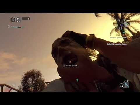 Dying Light: The Following – Enhanced Edition new place new town |