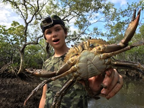 Thumbnail: HUGE MUDCRABS Caught BAREHANDED - Catch n Cook! HD