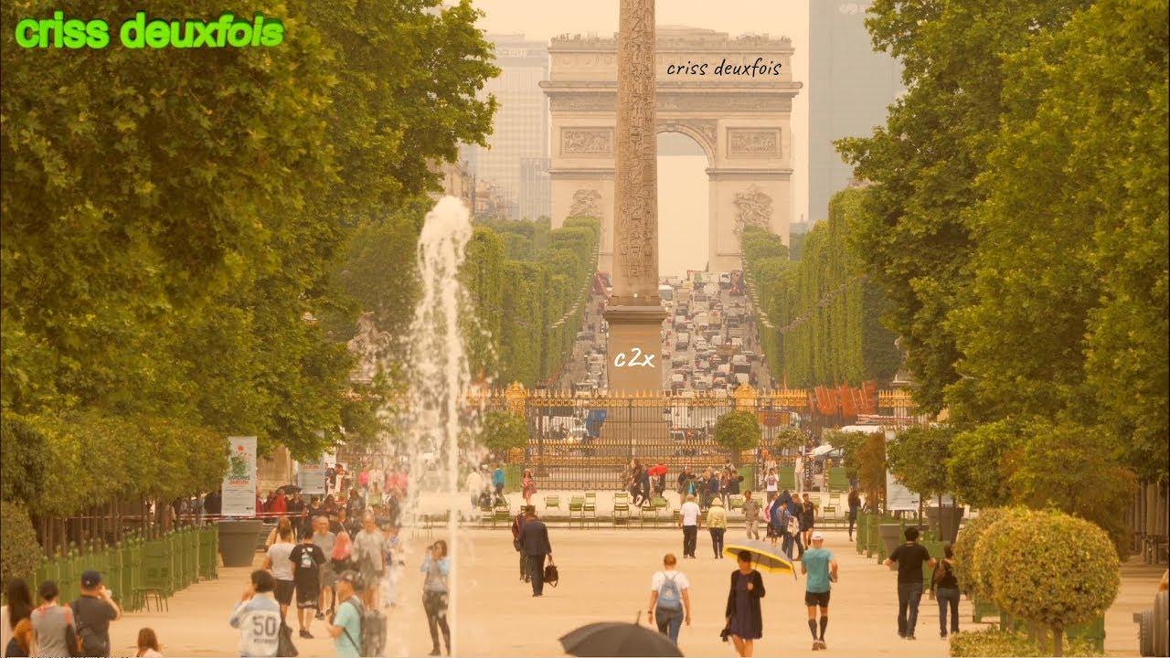 Jardin Des Tuileries Champs Elysees Gros Plan Place De La