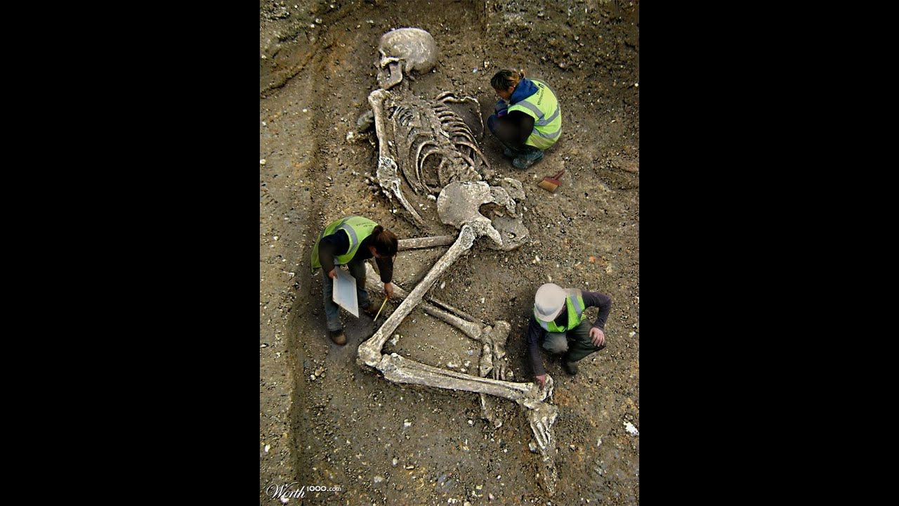 giant human skeleton unearthed in varna, bulgaria - youtube, Skeleton