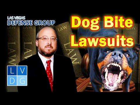 Nevada Dog Bite Laws