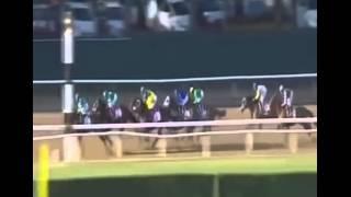 FULL RACE VIDEO AMERICAN PHAROAH WINS TRIPLE CROWN BELMONT STAKES 2015