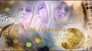 cold chamomile ~by the shameful choir~