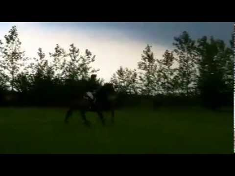 Tara McCabe xc training at Ely Eventing Centre with Owen Moore 2014