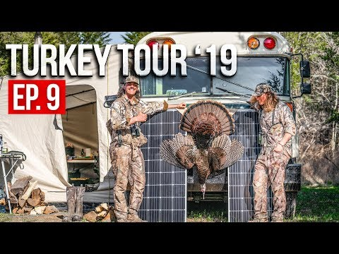 Spring Turkey Hunting - TENNESSEE PUBLIC LAND
