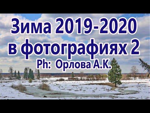 Зима 2019 2020 в фотографиях  2