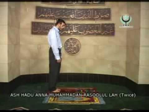 Shia prayer