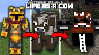 Minecraft LIFE AS A COW MOD / FIGHT AND MUTATE IN TO A COW WITH SUPER POWERS!! Minecraft