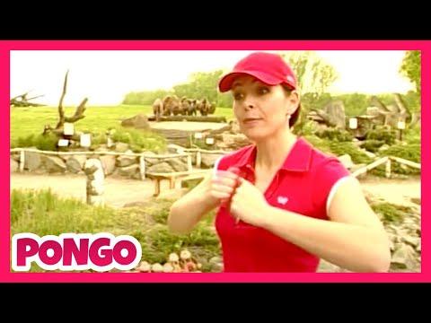 Míša Růžičková - Pongo (Cvičíme s Míšou - plná verze)