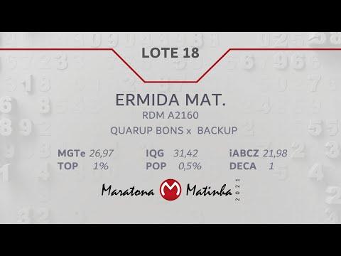LOTE 18  Maratona Matinha
