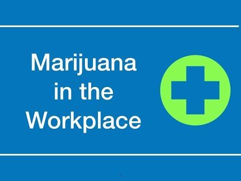 Marijuana in the Workplace | hrsimple.com
