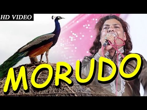 MORUDO Superhit Song By 'Kaluram Bikharniya' | MAJISA Bhajan | Live Video | Rajasthani Songs 2015