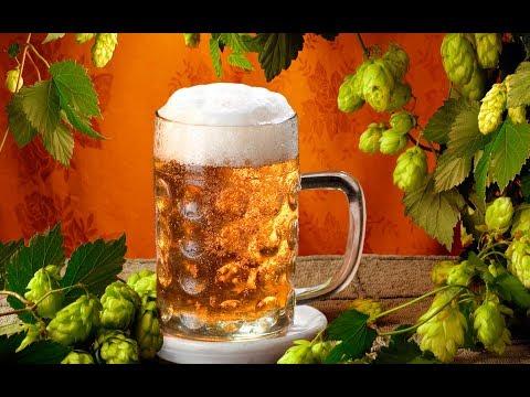 Что НУЖНО ЗНАТЬ ПРО ПИВО? Что будет, если пить пиво часто