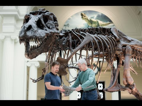 T. rex to Titanosaur: Big Dinosaur Changes Coming in 2018