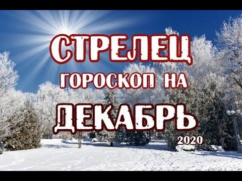 Стрелец. Гороскоп на декабрь 2020. Таро Магических Собак.