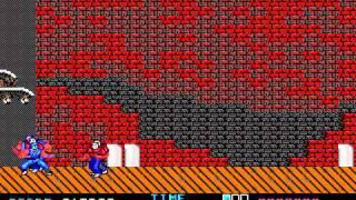 DOS - Ninja Gaiden - Longplay