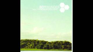 Boywunder - Under The Knife