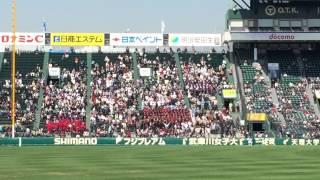 2015/03/27 第87回選抜高校野球 静岡応援団