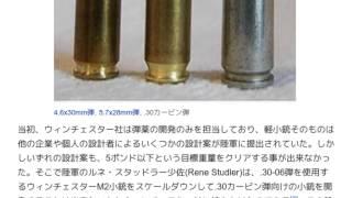 「.30カービン弾」とは ウィキ動画