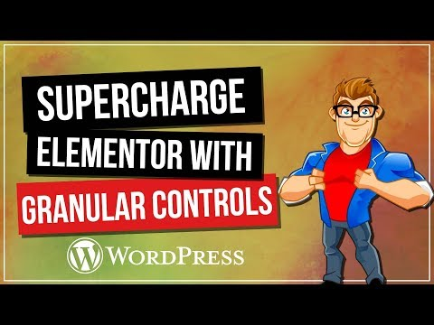 Supercharge ELEMENTOR with Granular Controls Plugin - 동영상