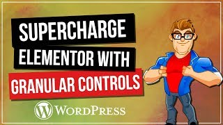 Supercharge ELEMENTOR with Granular Controls Plugin