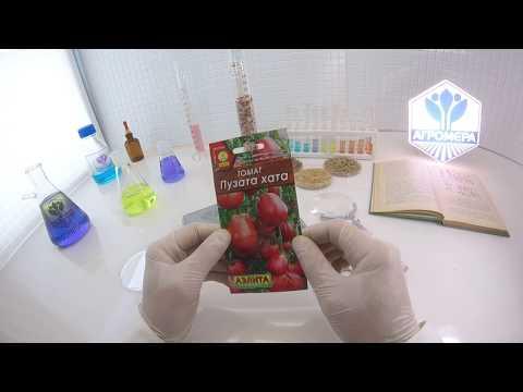 Помидоры Выращивание томатов Сорта и рассада, теплица и