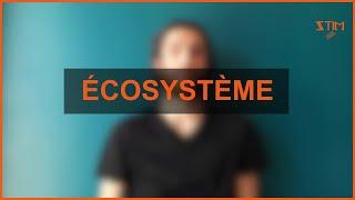 """Suite du jeu """"Écosystème"""""""