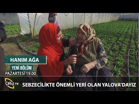 Yalova'nın Tarımsal Zenginlikleri - HANIM AĞA #tarım #çiftçi #hasat
