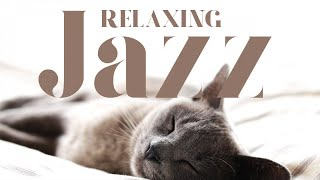 Baixar Relaxing Jazz - Best of cocooning jazz to chill and sleep