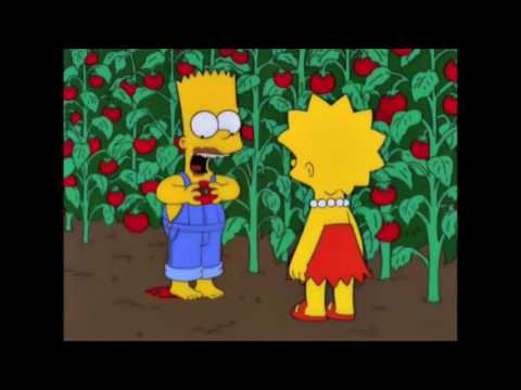 The Simpsons If only healthy food was addictive as this