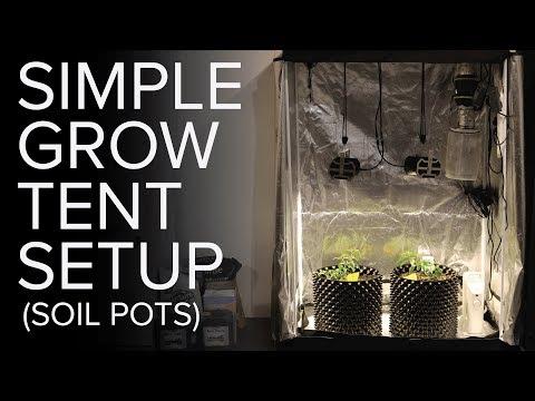 Basic Grow Tent Setup With Soil Pots