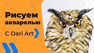 Для начинающих! Как нарисовать сову акварелью! #Dari_Art #рисоватьМОЖЕТкаждый(Спасибо за идею! Валерия Соловьёва А может совушку нарисуем? Свои идеи к видео урокам оставляйте в группе..., 2016-05-20T05:52:56.000Z)