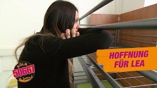 Köln 50667 - Hoffnung für Lea #1427 - RTL II