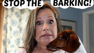 STOP THE BARKING!-Testing Bark Deterrents