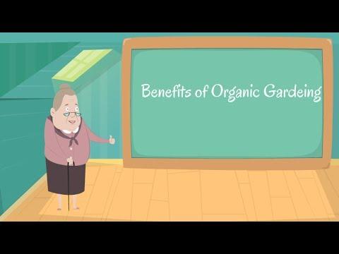 12 Benefits of Organic Gardening home | Organic Gardening Information | Organic Gardening Definition