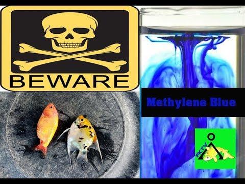 Methylene Blue: Useful Or Destructive? | Vlog   15