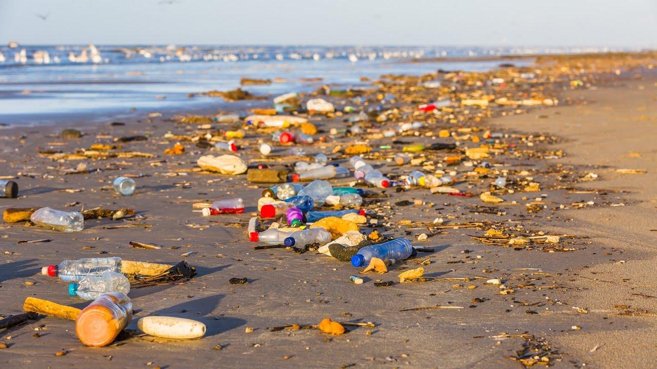 Plastfrit Hav: 4 projekter om plastikforurening i Danmark