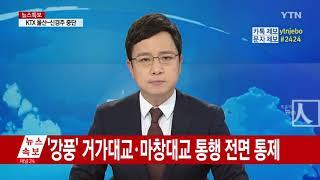 동백수상재난뉴스