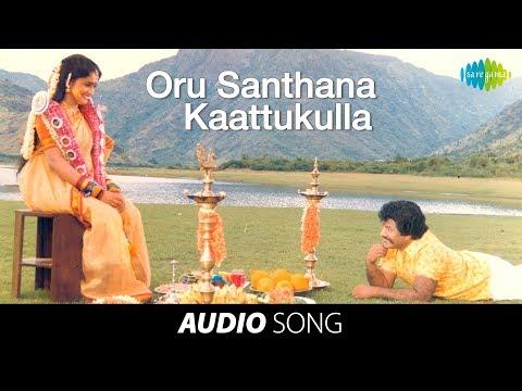 Ellame En Rasathan | Oru Santhana song | Rajkiran