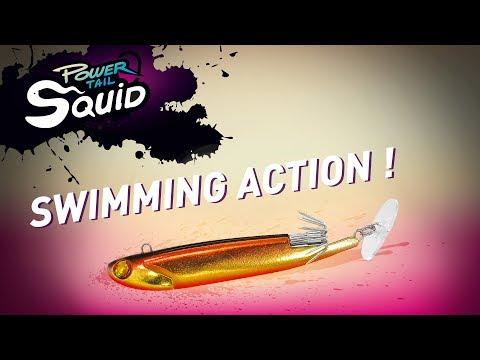 Le secret pour pêcher des seiches et des calamars !