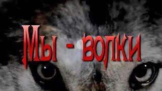 Вячеслав МЕДЯНИК. Мы -  волки / N-stудия