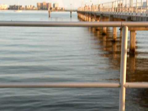 Club tesoro in port saint LucieKaynak: YouTube · Süre: 24 saniye