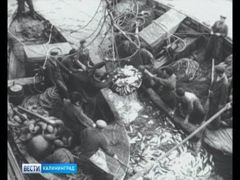 71 год назад к берегам Исландии отправилась первая сельдяная экспедиция из Калининграда
