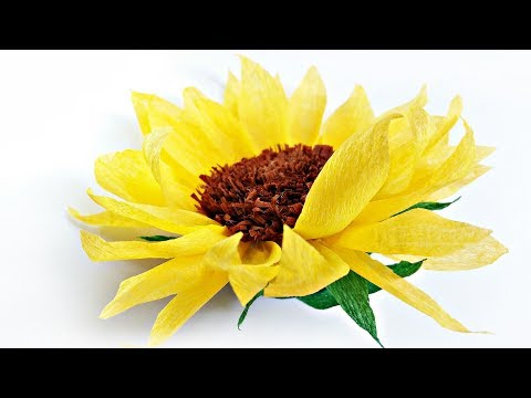 DIY tissue paper Sunflower flower for wall backdrop decoration crafts paper flowers easy