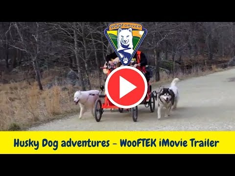 Husky Dog adventures - WooFTEK iMovie Trailer